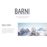Barni UI Kit