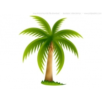 Palm Tree, PSD web icon