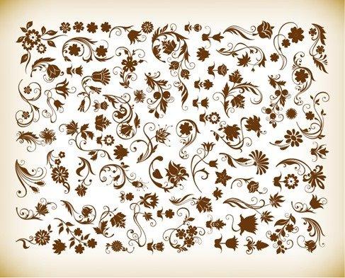 Vector Set of Floral Vintage Vector Design Elements