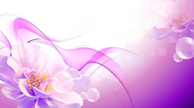 Flower Pink Background