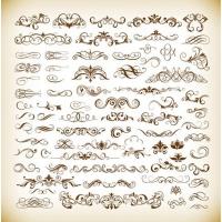 Set of Vector floral Elements for Your Design