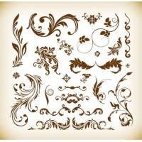 Various Floral Elements Vector Illustration Set