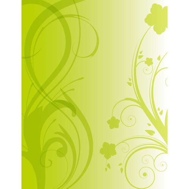 DECORATIVE FLORAL STOCK VECTOR