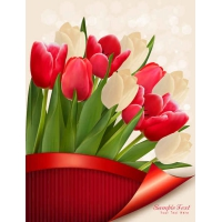 Colorful Tulips Vector Flowers