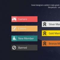 Pro Gaming Forum Ranks Labels Set