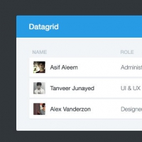 Free Web Elements: Datagrid