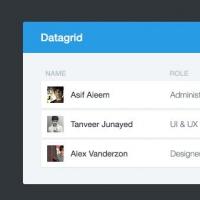 Free Web Elements: Datagrid