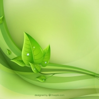 Eco Leaves And Green Waves