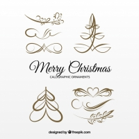 Several Christmas Golden Calligraphic Ornaments