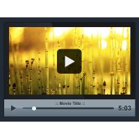 Custom PSD Video Player