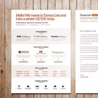 Visual Resume CV template