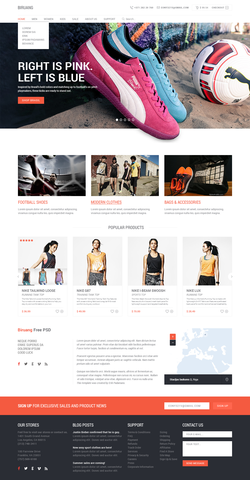 Biruang - Free PSD Website Template