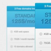 Web 2.0 Style Pricing Box