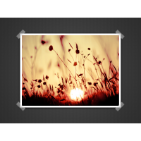 Image Presentation PSD