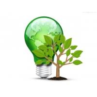 Green Light Bulb And Tree (PSD)