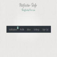 Notification & Badge