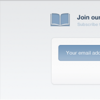 Newsletter Sign Up Form Interface