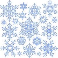 Variety Of Snowflakes Vector 2
