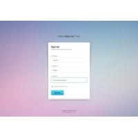 Sign Up Form With Input Boxes