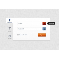 Three Famous Social Network Login Formulary