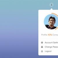 Simple User Profile Widget