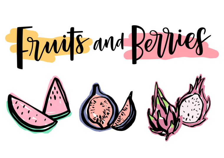 FRUITS AND BERRIES ILLUSTRATIONS