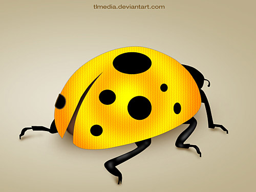 Lady Bug PSD