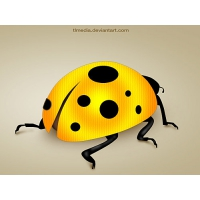 Lady Bug PSD