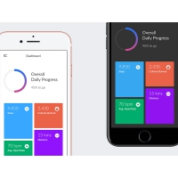 Fitness Application Dashboard UI Free