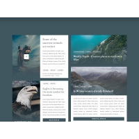 Blog and Magazine UI Kit Free