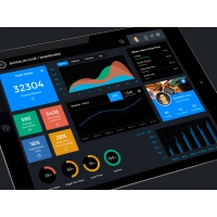 iPad Dashboard UI Design Kit