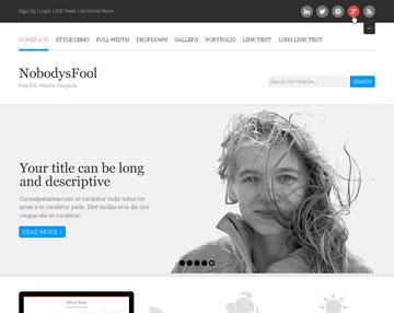 NobodysFool Free PSD Website Template