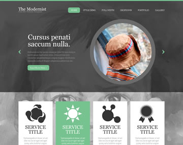 The Modernist Free PSD Website Template