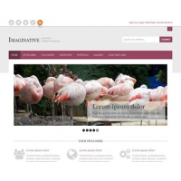 Imaginative Free PSD Website Template