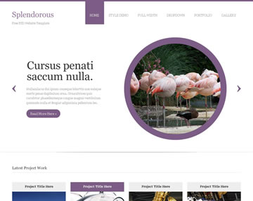 Splendorous Free PSD Website Template