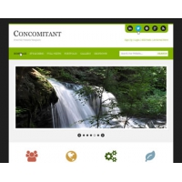 Concomitant Free PSD Website Template