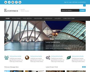 Euonymus Free PSD Website Template