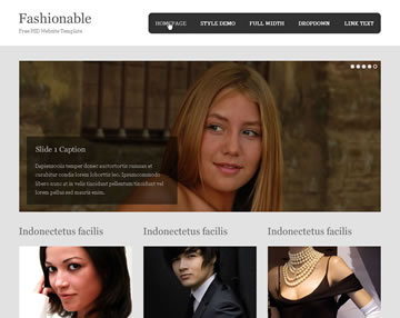 Fashionable Free PSD Website Template