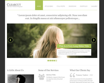 Clearcut Free PSD Website Template