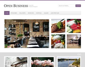 Open Business Free PSD Website Template