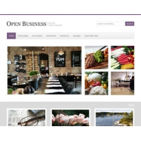 Open Business Free PSD Website Template