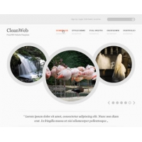 CleanWeb Free PSD Website Template