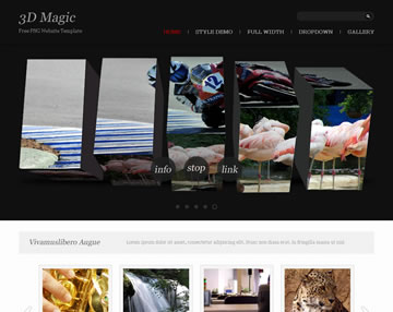 3D Magic Free PSD Website Template