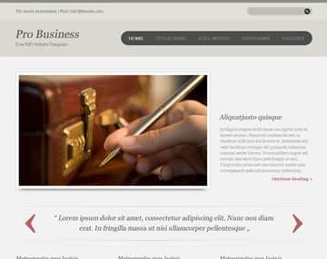 Pro Business Free PSD Website Template