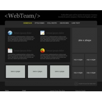 WebTeam Free PSD Website Template