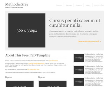 MethodicGrey Free PSD Website Template