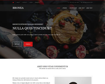 Bronea Free Website Template