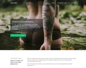 Gogopo Free Website Template