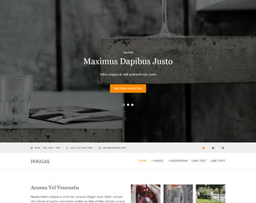 Doggax Free Website Template