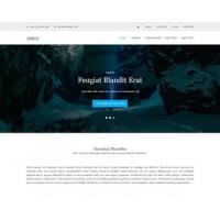 Jeren Free Website Template